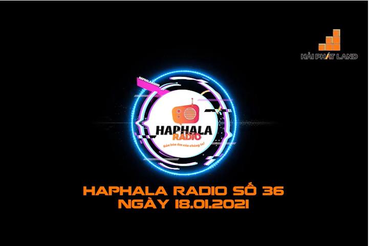Haphala Radio số 36 | Ngày 18/01/2021